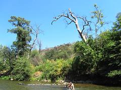 2012-07-14 14.59.10 (heatherbees) Tags: baby creek swim play jaden buttecreek