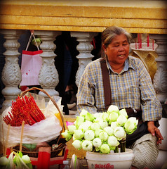 Lotus flower seller (bindubaba) Tags: cambodia phnompenh lotusflowers streetsellers