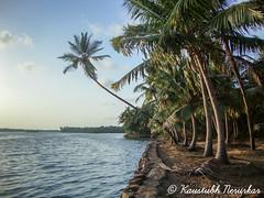 Parule Village (kaustubh.nerurkar) Tags: travel trees sunset sea india village outdoor wanderlust maharashtra konkan
