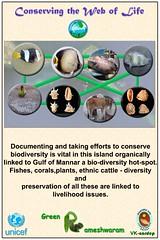 Green Rameswaram : panel_4 (Vivekananda Kendra) Tags: rameswaram vivekanandakendra vknardep naturalresourcesdevelopmentproject vivekanandakendranaturalresourcesdevelopmentproject greenrameswaram