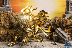 Lion SOG (Alreaph's Gallery) Tags: classic ex saint gold leo lion soul bolt plasma cloth lightening sanctuary myth eclair bandai seiya asgard sog zodiaque chevaliers sanctuaire aiolia tamashii foudroyant aior alreaph