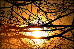 Breacadh an Lae (Keith Mac Uidhir  (Thanks for 3.5m views)) Tags: morning ireland red sky dublin orange sun yellow sunrise atardecer dawn tramonto himmel irland ciel cielo dublino irlanda irlande ierland irska dubln irlandia lirlanda irsko  airija irlanti  cng  iirimaa ha     rorszg         rlnd