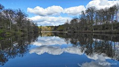 Dudmaston Lake (Bob.W) Tags: reflections shropshire ngc npc bridgnorth dudmastonestate
