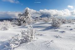 Snowscape (Tekila63) Tags: winter snow hiver neige auvergne snowscape