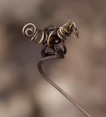 snail face! (marianna armata) Tags: canada eye face spring snail vine curled swirl twisted grapevine marianna armata