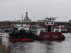 Schiffskatastrophe-00780 (pischty.hufnagel) Tags: elbe beskydy frisland schiffskatastrophe awraus
