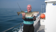 "Clive Perry's Cod • <a style=""font-size:0.8em;"" href=""http://www.flickr.com/photos/113772263@N05/26013979715/"" target=""_blank"">View on Flickr</a>"