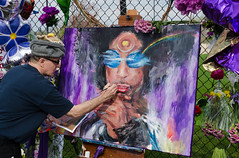 Painter (Greg Riekens) Tags: usa minnesota painting memorial prince painter chanhassen paisleypark flickrelite nikond7000