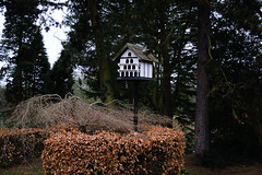 Dovecote in the woods ! - March 2016 (I.T.P.) Tags: gardens botanical birmingham woods dovecote