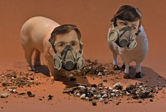 When the Smells in the Barnyard Become Overbearing (ricko) Tags: toys pig sheep surreal smells barnyard gasmasks odors