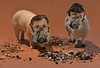 When the Smells in the Barnyard Become Overbearing (ricko) Tags: toys pig sheep surreal smells barnyard gasmasks odors