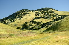 Brushy Peak Trail from Staging Area (jeffmgrandy) Tags: landscape hiking hills livermore altamont brushy
