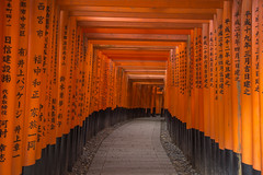 Fushimi Inari-taisha  Canon EOS 6D (gringerberg) Tags: japan temple kyoto asia  sakura asie torii japon sanctuary sanctuaire canon24105mmf4lisusm canoneos6d  gringerberg  wwwgringerbergcom