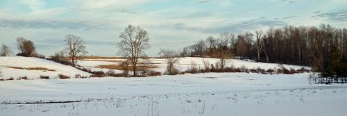 Berkshire Meadow - Winter Panoramic
