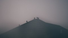 f (meggicb) Tags: chile roof birds fog clouds blurry pigeons conce helios442 sovietlens nikond3100
