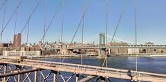 View from Brooklyn Bridge (ArunRahman) Tags: newyorkcity newyork skyline architecture river manhattan brooklynbridge manhattanbridge hudsonriver newyorkcityskyline