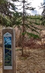 fenland trail (rana.way) Tags: painting wetlands fen mountrundle fenlandtrail