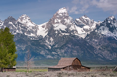 Grand Teton - Moulton Barn (fabriciodo) Tags: wyoming grandtetonnp moultonbarn