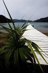 IMG_6446 (jonward6000) Tags: japan amami amamioshima