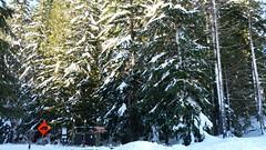 20160101_103056 (mjfmjfmjf) Tags: snow oregon trilliumlake 2016 snoeshoe