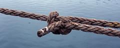 (helena.e) Tags: water rep rope knot vatten knut tjörn skärhamn helenae
