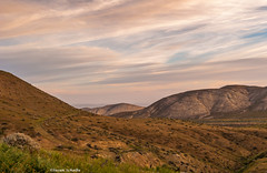 Dreams of long ago (Photosuze) Tags: california morning sky mountains grass clouds landscape hills pastels carrizoplain