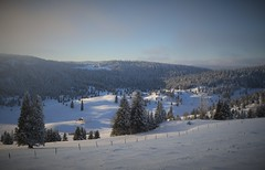 Jura Vaudois (yanoche) Tags: winter white snow switzerland suisse hiver jura neige vaud raquettes orblanc