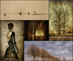 Collage of the weekphoto's (patrick.verstappen) Tags: trees winter woman snow art nature collage sepia painting january week hdr textured ginelom