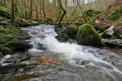 The Inchewan Burn (eric robb niven) Tags: water walking scotland dundee outdoor falls glen dunkeld birnam ericrobbniven