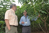 Hernan Ceballos (left) and Peter Kulakow in cassava field (IITA Image Library) Tags: nigeria cassava varieties iita manihotesculenta