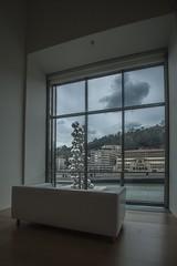 Fenêtre sur le Nervión, musée de guggenheim, Bilbao. (BATTAGLIN laurent) Tags: musee bilbao guggenheim espagne