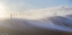 Brushy Peak Regioanl Preserve 2016 (katiewong511) Tags: california fog sunrise san francisco windmills bayarea livermore regionalpark easybay hilking rouninghill