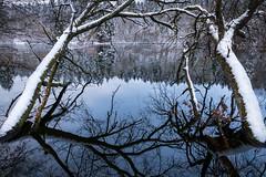 Reflections (Sebo23) Tags: schnee trees reflections wasser reflektionen spiegelungen canon6d canon24704l