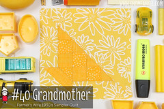 gnomeangel-farmers-wife-1930-block-40-grandmother (gnomeangel) Tags: modern quilt quilting patchwork tutorial farmerswife fussycutting gnomeangel fussycuttersclub farmerswife1930