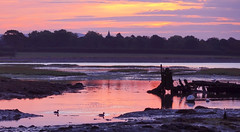 Langstone Dawn (Langstone Joe) Tags: seascape reflection dawn haylingisland hampshire portsmouth wreck wildfowl orangeglow langstoneharbour havant warblingtonchurch