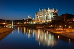 Kathedrale Palma (muman71) Tags: bluehour mallorca nachtaufnahme palmademallorca blauestunde 2015 nikon1835 dsc8428 d300s kathedralepalma