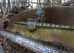DSC08550.ARW-01 (juice95m3) Tags: abandoned rust vintagecar automobile junkyard oldcars classiccars