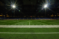 50 yard line  Ford Field Detroit, MI (jedwards10111213) Tags: stadium detroit 50yardline