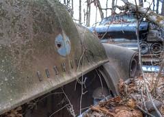 DSC08537.ARW-01 (juice95m3) Tags: abandoned rust vintagecar automobile junkyard oldcars classiccars