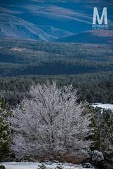 Matthieu Vitre-MtVentoux (photomontagne) Tags: landscape hiver neige coucherdesoleil vaucluse ventoux montventoux