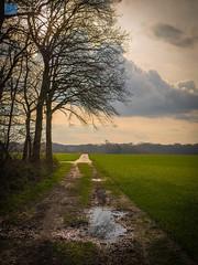 Cloudy Sunset (Lollomato) Tags: landscape sigma olympus landschaft omd 30mm em5