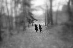 (blazedelacroix) Tags: blackandwhite blur monochrome forest women sweden path thewalk rx100 bnwdemand blazedelacroix