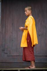Le jeune moine (cyril4494) Tags: orange nikon habit monk buddhism myanmar bouddhisme birmanie moine toge d700