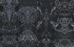 Materials (fionaeaton@rectorymansion) Tags: x l 3937 phm50aphm50bpietheineekwallpapernlxlrollwallpape 8718421164080 phm50aphm50bpietheineekwallpapernlxlrollwallpapermaterialsmarbleblacknojointsmirroredmaterialswallpaperbypietheineeknlxlnlxllabnlxllabpremiumwallpapernizbizz rollsizew487cmxl1000cm rollsizew192 rollsizew487cmxl1000cm49m2 39375242sqft