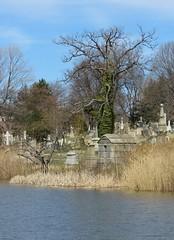 IMG_8963b (Naturecamhd) Tags: nyc newyorkcity lake grave graveyard canon bronx gothic goth powershot thebronx gravemarker woodlawncemetery woodlawnlake thewoodlawncemetery canonpowershotsx60hs sx60hs