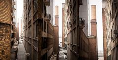 triptyque brown bricks (anthony.tison) Tags: brown newyork bricks triptyque highline