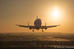 Airbus A300-600ST Beluga (Marcos_Vzquez) Tags: sunset plane airport sevilla military seville landing airbus beluga aeropuerto aterrizaje a300 600st
