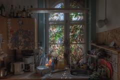 Nature's Kitchen (Cyber House) Tags: sunlight abandoned window kitchen denmark decay derelict appliances ue urbex cyberhouse natureskitchen