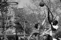 Jump Shot I_bw (Joe Josephs: 2,650,890 views - thank you) Tags: nyc newyorkcity travel sports basketball action centralpark manhattan streetphotography photojournalism centralparknewyork urbanlandscapes actionphotography travelphotography urbanparks urbannewyorkcity joejosephs joejosephsphotography
