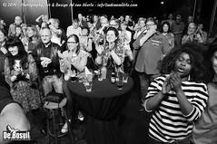 2016 Bosuil-Het publiek tijdendens Blues Caravan 2016 7-ZW